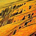 Liquid crystal textures - mountines.jpg