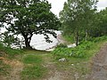 Loch Arkaig and tree - geograph.org.uk - 837323.jpg