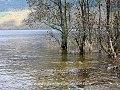 Loch Lomond, Scotland (16317467578).jpg