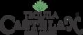 Logo nuevo castelan sin fondo.png