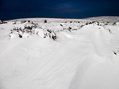 Snowdrift - Wikipedia