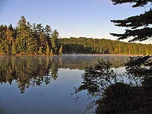 Long Pond, in the Saint Regis Canoe Area. Take...