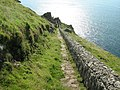 Looking down the Battery steps - geograph.org.uk - 582708.jpg