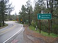 Looking up CA-243 from Mountain Center.jpg