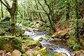 Lousame Toxosoutos rio.jpg