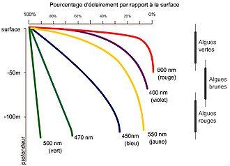 Etage Oceanographie Wikipedia