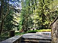 Luxembourg-Clausen, cimetière Malakoff (102).jpg