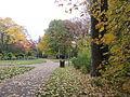 MSU 2014 Botanical Garden P.jpg