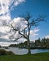Mackerel Cove (15241673424).jpg