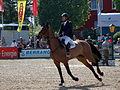 Maimarkt Mannheim 2014 - 51. Maimarkt-Turnier-164.JPG