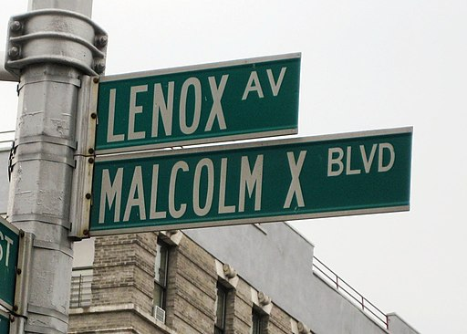 Malcolm X Blvd street sign