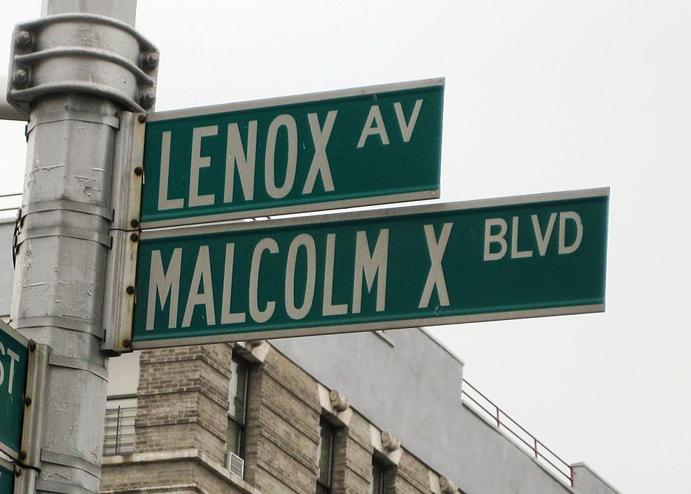 Malcolm X Blvd street sign