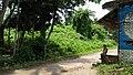 Manasa Mound - South-western View - Manasapota - Simurali - Nadia 20170730115657.jpg