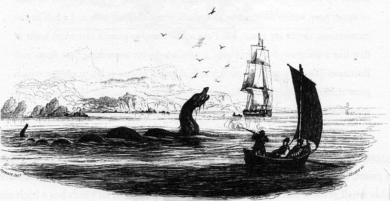File:Maned sea serpent 1755.jpg