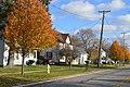 Maple east of Swanton, Metamora.jpg