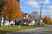 Maple east of Swanton, Metamora.jpg