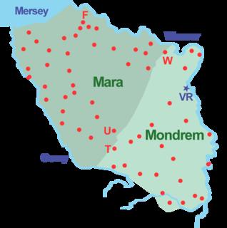 Forests of Mara and Mondrem