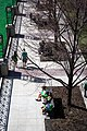 March 17, 80 degrees in Chicago and everything has turned green, except trees (6990975483).jpg
