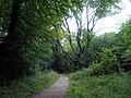 Marlesdon Park footpath - geograph.org.uk - 47442.jpg