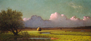 Sunlight and Shadow: The Newbury Marshes (Martin Johnson Heade)