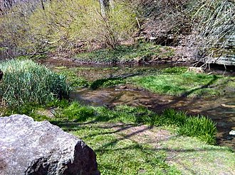 McConnell Springs Park - Image: Mc Connell Springs
