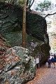 Meiji no Mori Minoh Quasi-National Park Minoh Osaka pref Japan15s3.jpg