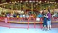 Merry-go-round (3856569480).jpg