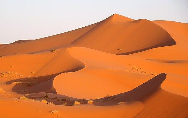 Pieskové duny na púšti