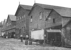 MiamiAvenue1896