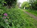 Middle Lane, Hedon - geograph.org.uk - 1283015.jpg