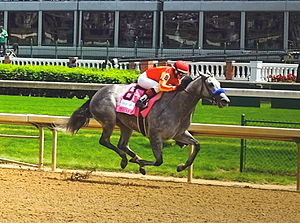 Rosie Napravnik - Napravnik riding Midnight Lucky to win the 2014 Humana Distaff at Churchill Downs