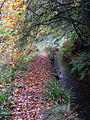 Mill leat, Nant-y-Coy - geograph.org.uk - 1011673.jpg