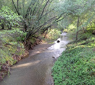 Miller Creek (Marin County, California) - Miller Creek in April 2010.