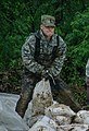 Missouri National Guard (34335529921).jpg
