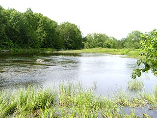 Moira River
