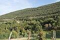 Monte Sabotino (1).jpg