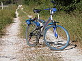Montecalvoli Bicycicle Valley.jpg