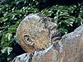 Monumento a Padre Pio 11.jpg