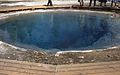 Morning Glory Pool 1956.jpg