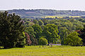 Mote park and the North Downs.jpg