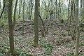Motte op de Butsberg te Tielt-Winge - 371500 - onroerenderfgoed.jpg