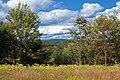 Mountaintop Meadow (2) (8017842495).jpg
