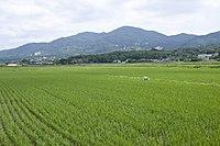 Mt.Kaba 11.jpg