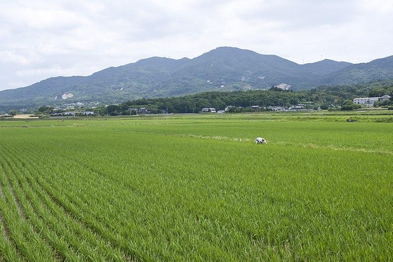 File:Mt.Kaba 11.jpg