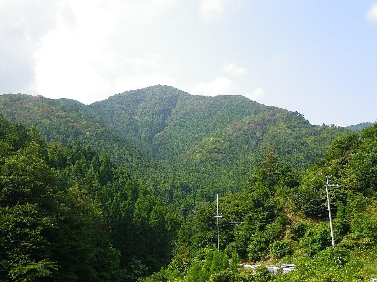 皆子山(京都府)