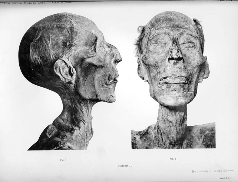 An introduction to the life and history of ramses ii