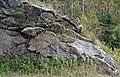 Muscovite schist (Appalachian Gap, Green Mountains, Vermont, USA) 6.jpg