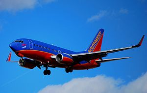 "N248WN Southwest Airlines 2006 Boeing 737-7H4 (cn 32509-2000) ""2000th 737 Next Generation"" (4380285154).jpg"