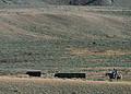 NRCSMT01043 - Montana (4935)(NRCS Photo Gallery).jpg