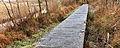 Nationaal Park Weerribben-Wieden. Vlonderbrug door moeras 02.jpg
